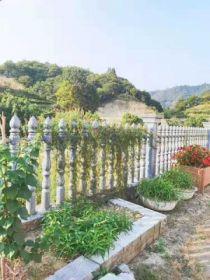 静谧的原生态小山村