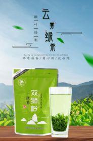 2021年新茶 高山炒青绿茶明前茶250g