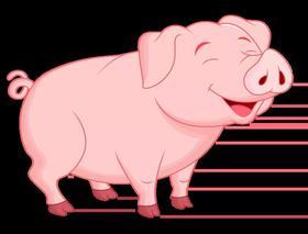 影响肉猪育肥的因素