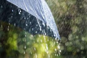 连阴雨的联想